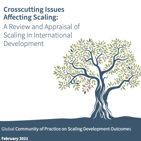 Crosscutting Issues Affecting Scaling: A Review and Appraisal of Scaling in International Development