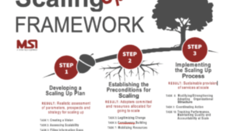 Tipping the Scales: Moving from Projects to Scalable Solutions in Fragile States