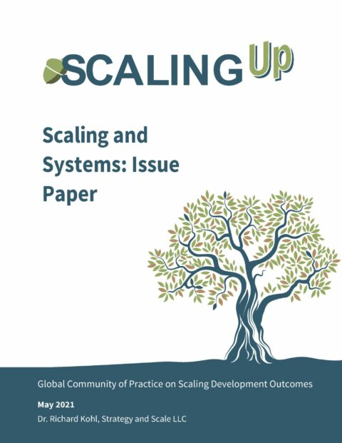 Scaling and Systems:  Issues Paper